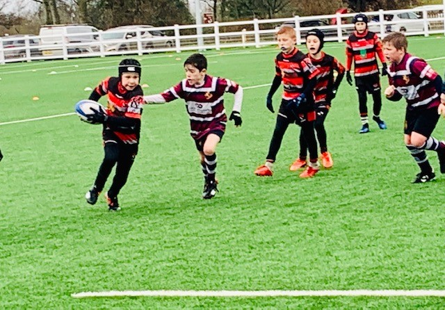 Mini & Youth Rugby
